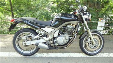 ヤマハ SRX600