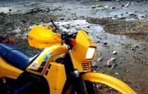スズキ RH250