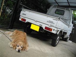 スズキ CARRY 4WD