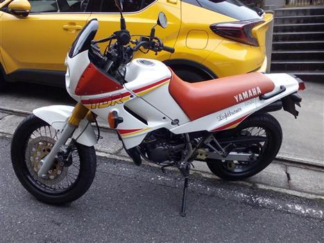 ヤマハ TDR125