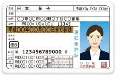 自動車免許を初めて取得したのに